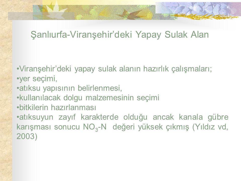Şanlıurfa-Viranşehir'deki Yapay Sulak Alan Viranşehir'deki yapay sulak alanın hazırlık çalışmaları; yer seçimi, atıksu yapısının belirlenmesi, kullanı