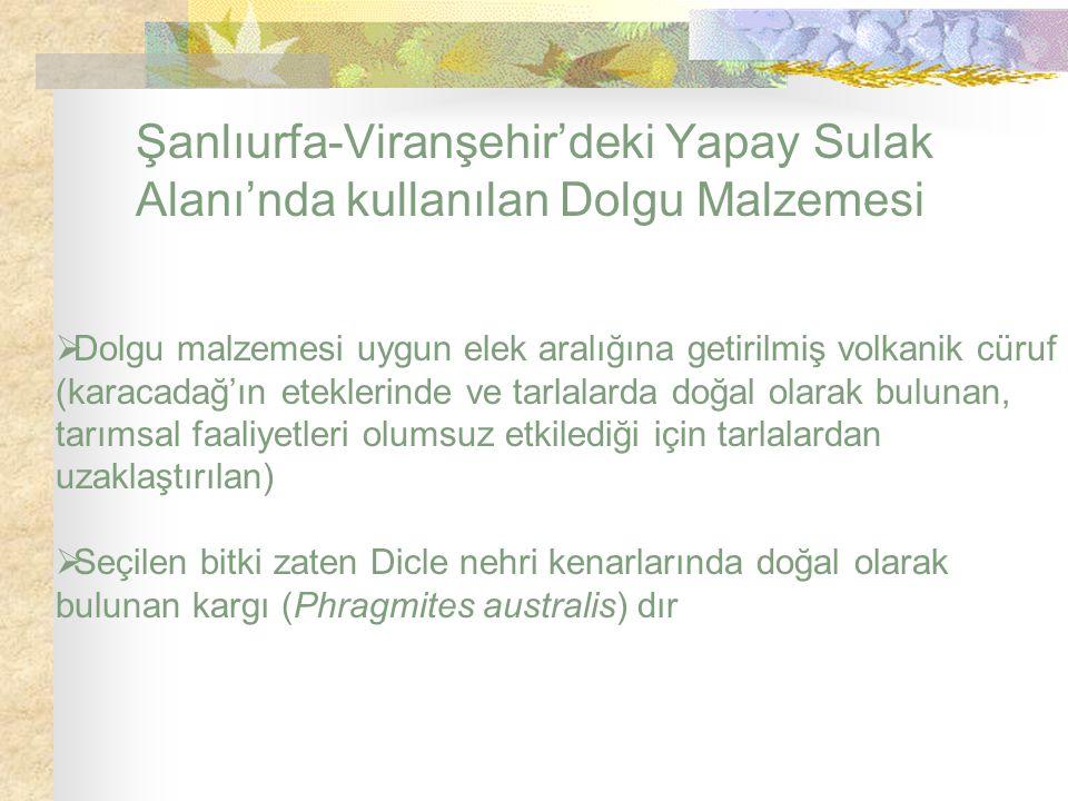 Şanlıurfa-Viranşehir'deki Yapay Sulak Alanı'nda kullanılan Dolgu Malzemesi  Dolgu malzemesi uygun elek aralığına getirilmiş volkanik cüruf (karacadağ