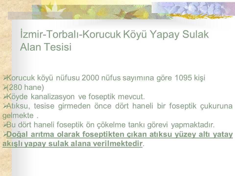 İzmir-Torbalı-Korucuk Köyü Yapay Sulak Alan Tesisi  Korucuk köyü nüfusu 2000 nüfus sayımına göre 1095 kişi  (280 hane)  Köyde kanalizasyon ve fosep