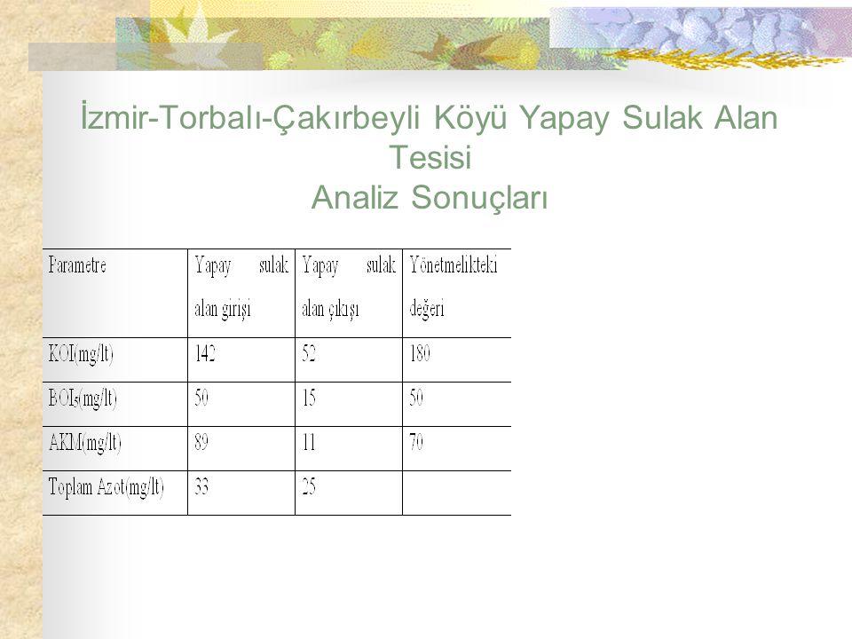 İzmir-Torbalı-Çakırbeyli Köyü Yapay Sulak Alan Tesisi Analiz Sonuçları