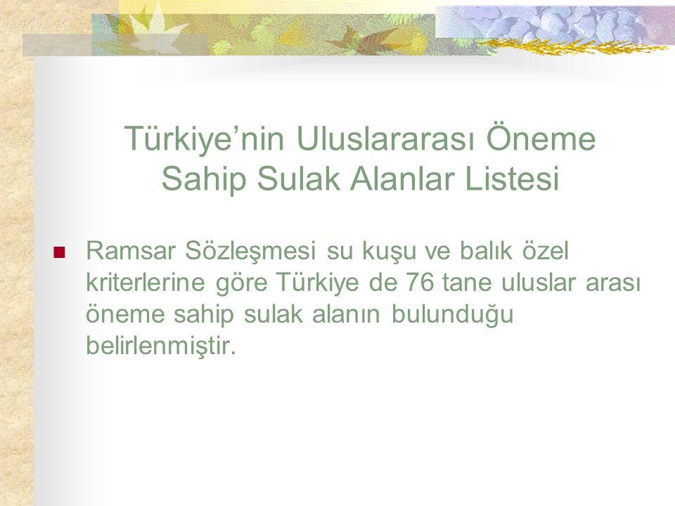 Türkiye'nin Uluslararası Öneme Sahip Sulak Alanlar Listesi Ramsar Sözleşmesi su kuşu ve balık özel kriterlerine göre Türkiye de 76 tane uluslar arası