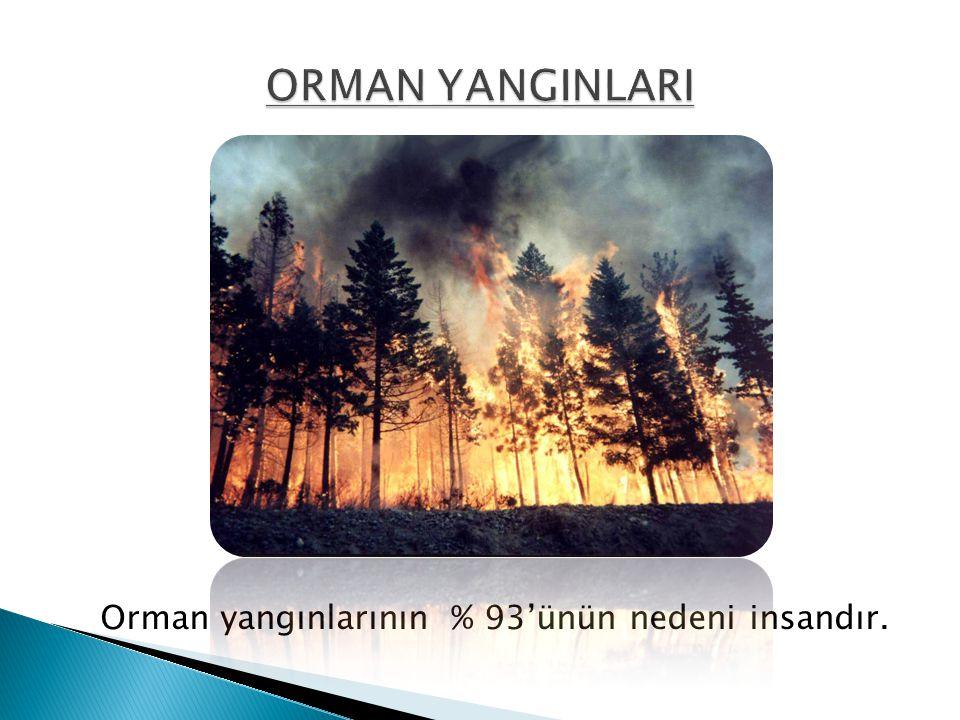 Orman yangınlarının % 93'ünün nedeni insandır.