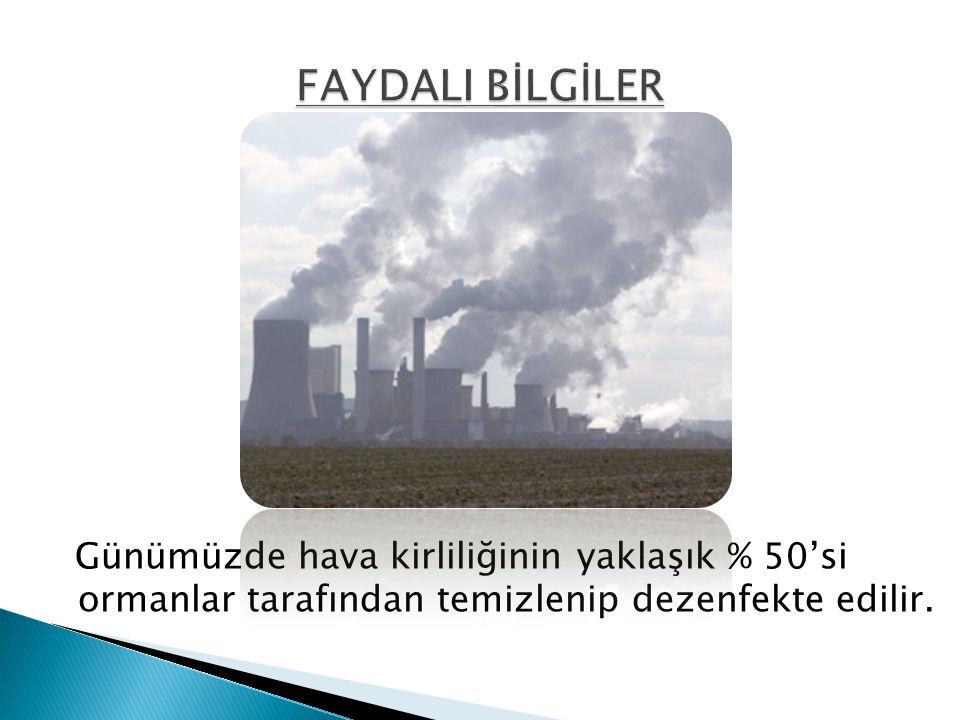 Günümüzde hava kirliliğinin yaklaşık % 50'si ormanlar tarafından temizlenip dezenfekte edilir.