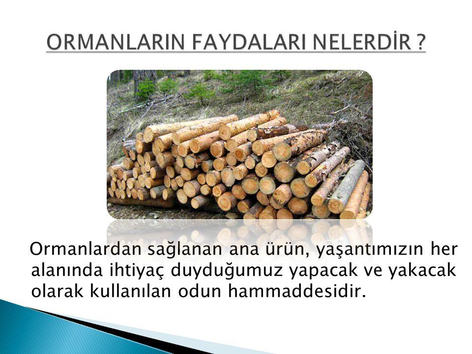 Ormanlardan sağlanan ana ürün, yaşantımızın her alanında ihtiyaç duyduğumuz yapacak ve yakacak olarak kullanılan odun hammaddesidir.