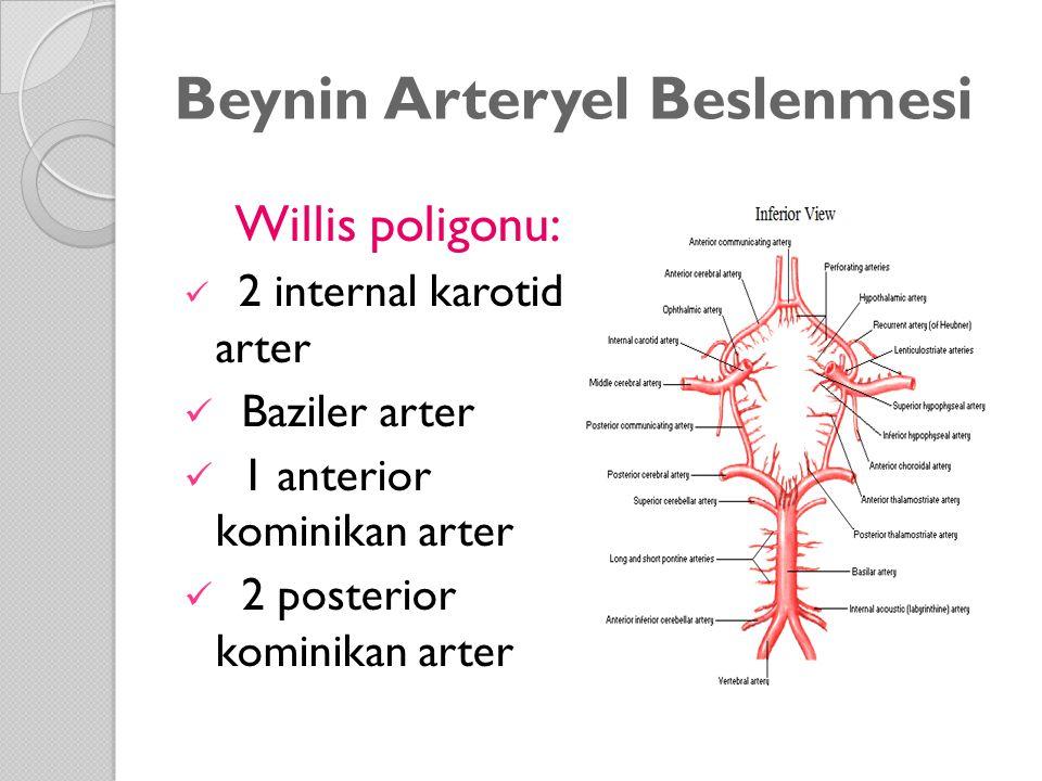 Beynin Arteryel Beslenmesi Willis poligonu: 2 internal karotid arter Baziler arter 1 anterior kominikan arter 2 posterior kominikan arter