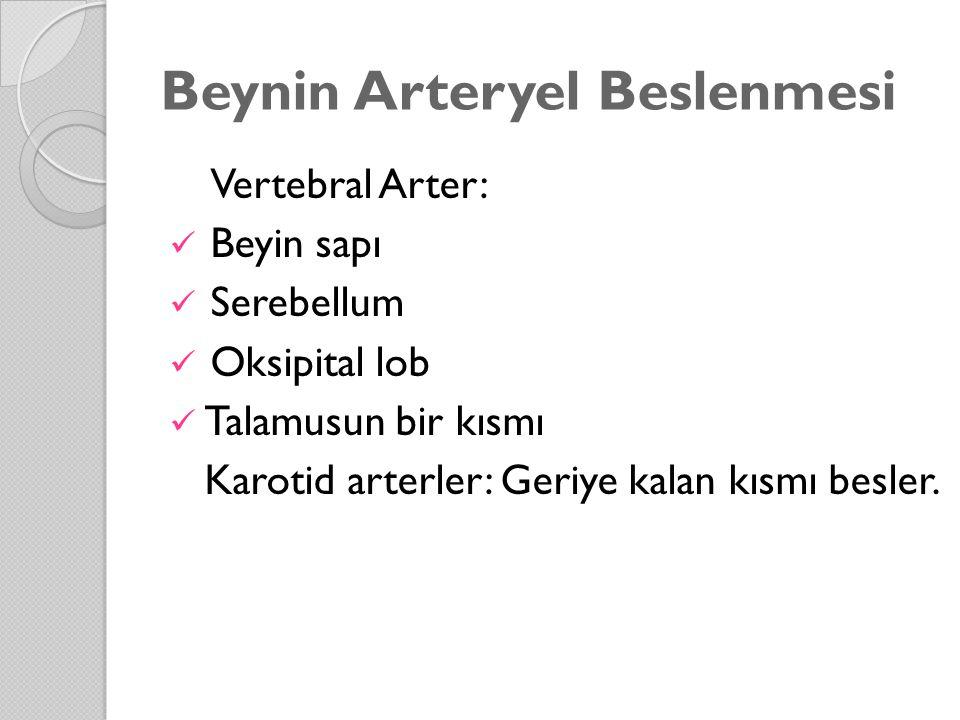 Beynin Arteryel Beslenmesi Vertebral Arter: Beyin sapı Serebellum Oksipital lob Talamusun bir kısmı Karotid arterler: Geriye kalan kısmı besler.