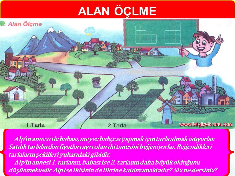 Alp'in annesi ile babası, meyve bahçesi yapmak için tarla almak istiyorlar. Satılık tarlalardan fiyatları ayrı olan iki tanesini beğeniyorlar. Beğendi