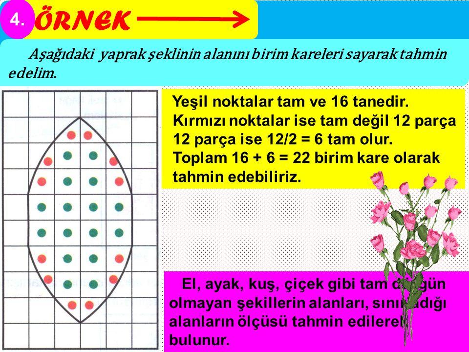 ÖRNEK 4. Aşağıdaki yaprak şeklinin alanını birim kareleri sayarak tahmin edelim. Yeşil noktalar tam ve 16 tanedir. Kırmızı noktalar ise tam değil 12 p