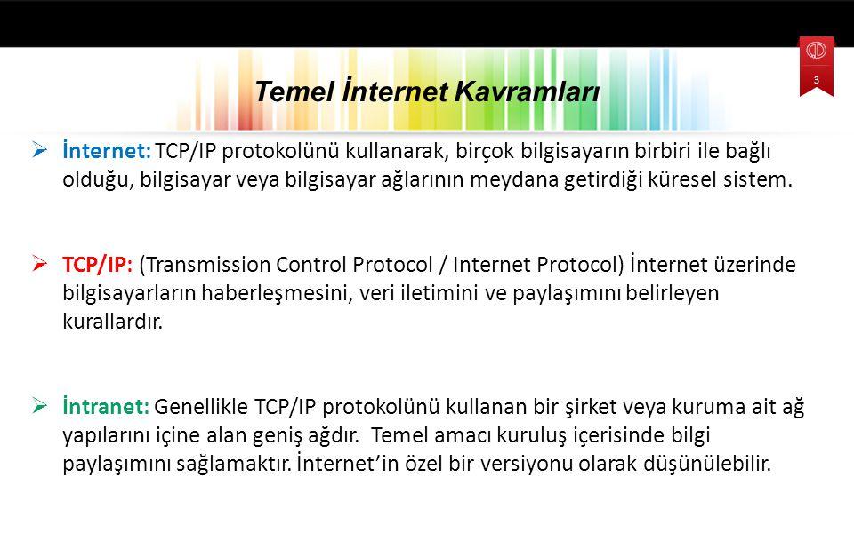  İnternet: TCP/IP protokolünü kullanarak, birçok bilgisayarın birbiri ile bağlı olduğu, bilgisayar veya bilgisayar ağlarının meydana getirdiği kürese