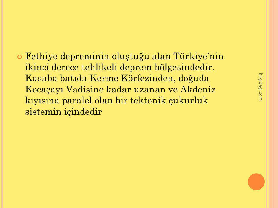 Fethiye depreminin oluştuğu alan Türkiye'nin ikinci derece tehlikeli deprem bölgesindedir. Kasaba batıda Kerme Körfezinden, doğuda Kocaçayı Vadisine k