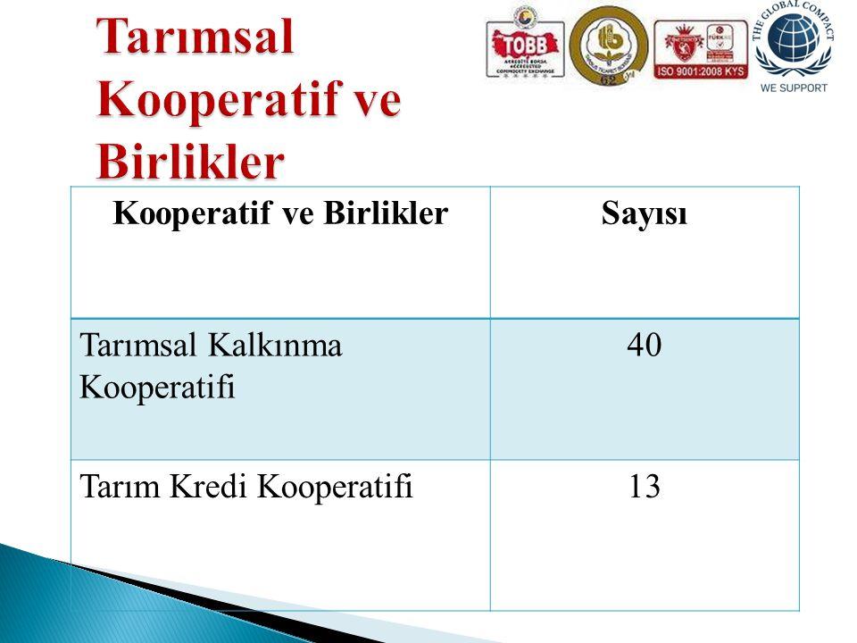 Kooperatif ve BirliklerSayısı Tarımsal Kalkınma Kooperatifi 40 Tarım Kredi Kooperatifi13