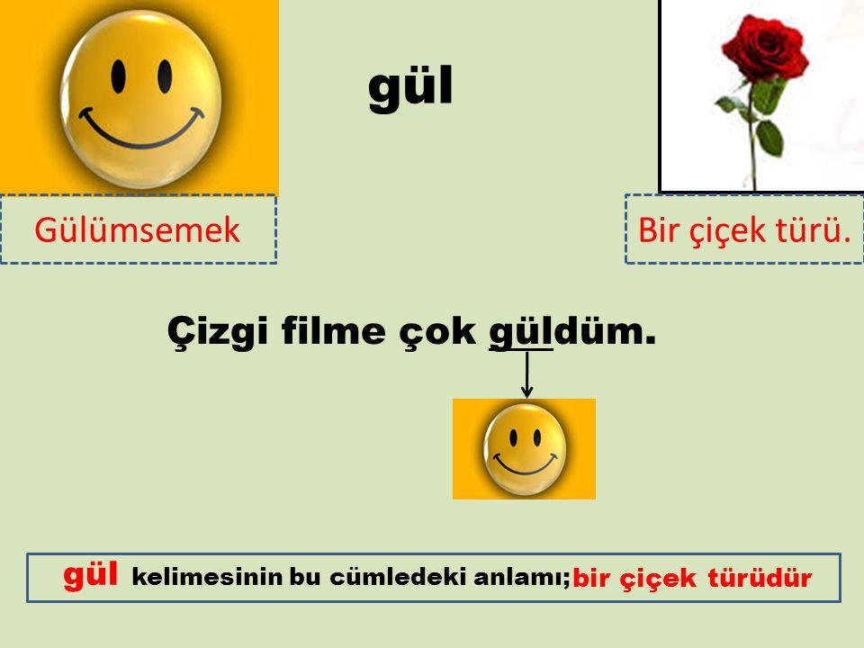gül GülümsemekBir çiçek türü.kelimesinin bu cümledeki anlamı; Çizgi filme çok güldüm.
