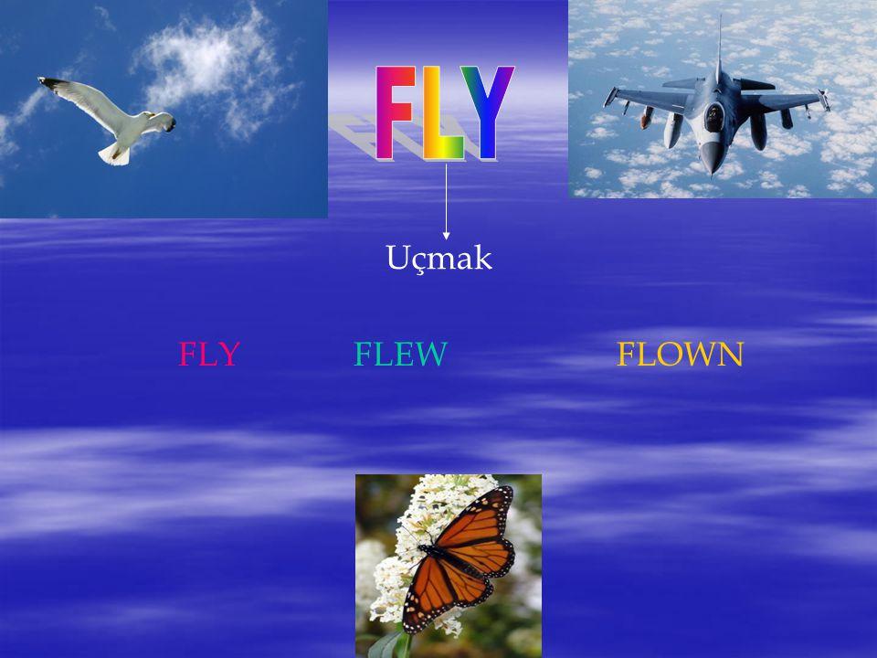 Uçmak FLYFLEWFLOWN