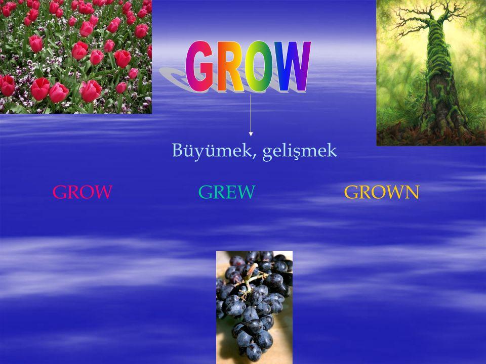 Büyümek, gelişmek GROWGREWGROWN