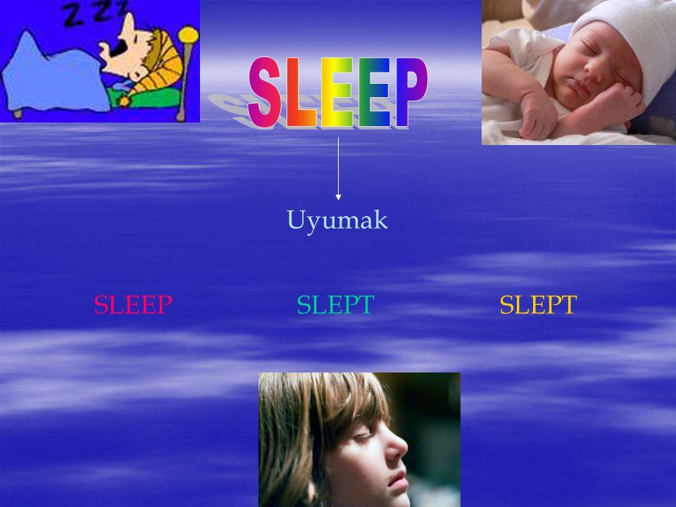 Uyumak SLEEPSLEPTSLEPT