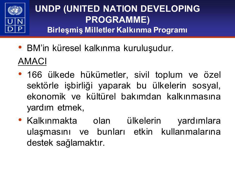 UNDP (UNITED NATION DEVELOPING PROGRAMME) Birleşmiş Milletler Kalkınma Programı BM'in küresel kalkınma kuruluşudur.