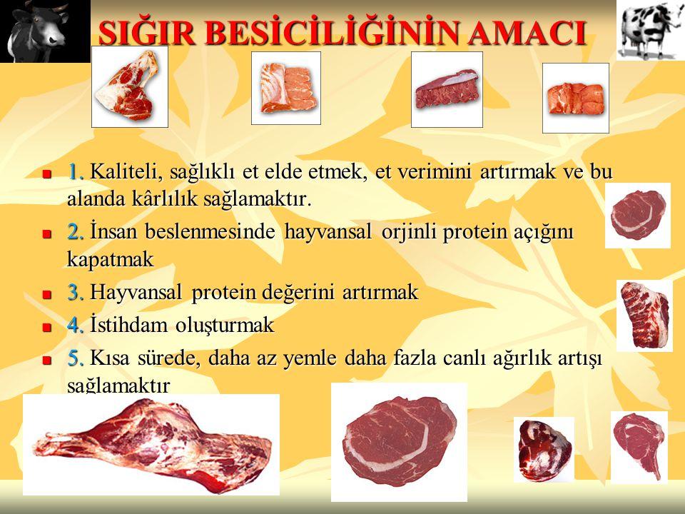 SIĞIR BESİCİLİĞİNİN AMACI 1. Kaliteli, sağlıklı et elde etmek, et verimini artırmak ve bu alanda kârlılık sağlamaktır. 1. Kaliteli, sağlıklı et elde e