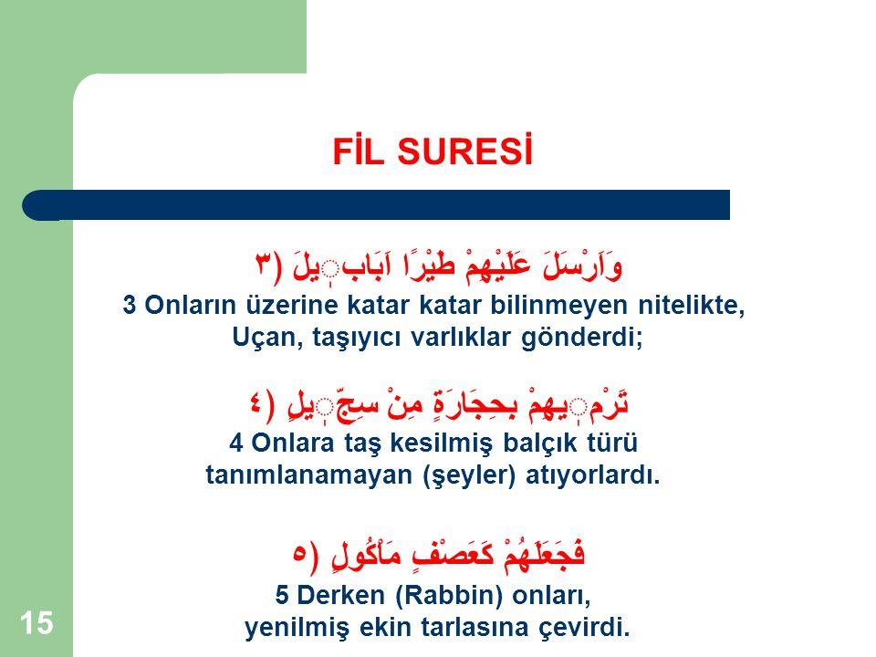 16 FİL ORDUSU NASIL PERİŞAN EDİLDİ 1.