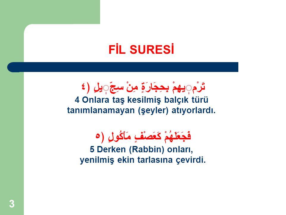 4 SURENİN KİMLİĞİ FİL SURESİ Nuzul Sıra 20 Ayet Sayısı 5 Nuzul Yılı 3 Mushaf Sıra 105