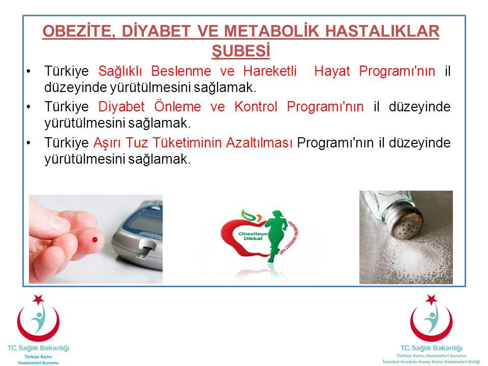 OBEZİTE, DİYABET VE METABOLİK HASTALIKLAR ŞUBESİ Türkiye Sağlıklı Beslenme ve Hareketli Hayat Programı'nın il düzeyinde yürütülmesini sağlamak. Türkiy