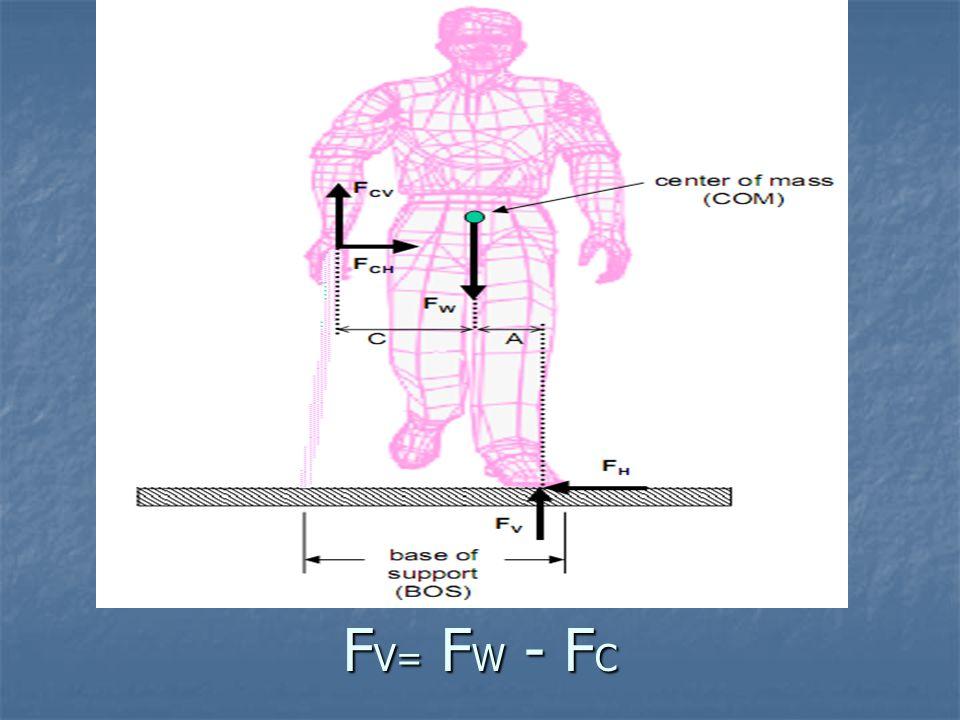 F V= F W - F C