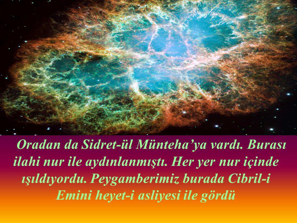 Peygamberimize (s.a.v) yedinci kat semadan sonra cennet gösterildi.