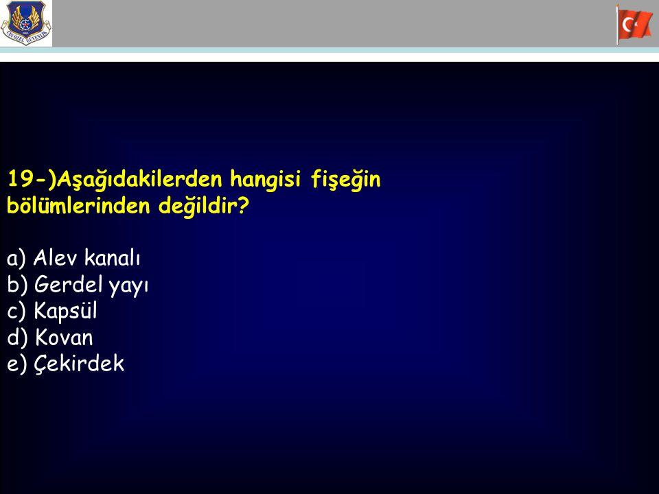 19-)Aşağıdakilerden hangisi fişeğin bölümlerinden değildir? a) Alev kanalı b) Gerdel yayı c) Kapsül d) Kovan e) Çekirdek