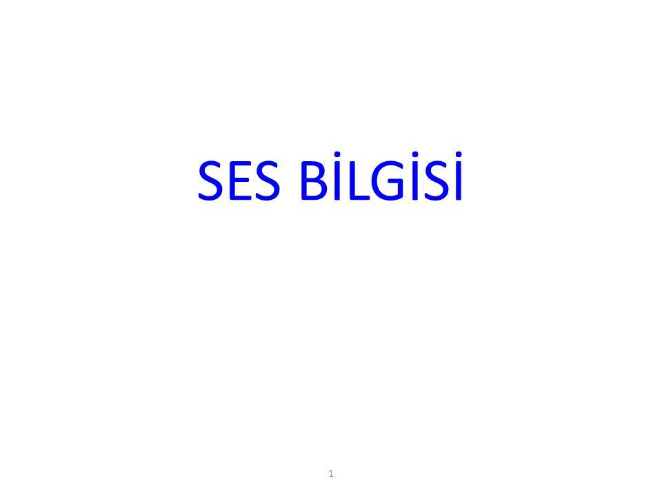 1 SES BİLGİSİ