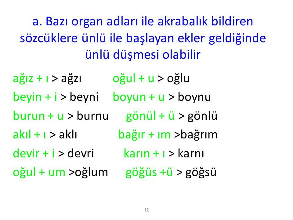12 a. Bazı organ adları ile akrabalık bildiren sözcüklere ünlü ile başlayan ekler geldiğinde ünlü düşmesi olabilir ağız + ı > ağzı oğul + u > oğlu bey