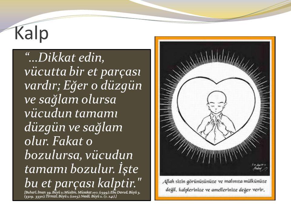 """Kalp """"…Dikkat edin, vücutta bir et parçası vardır; Eğer o düzgün ve sağlam olursa vücudun tamamı düzgün ve sağlam olur. Fakat o bozulursa, vücudun tam"""