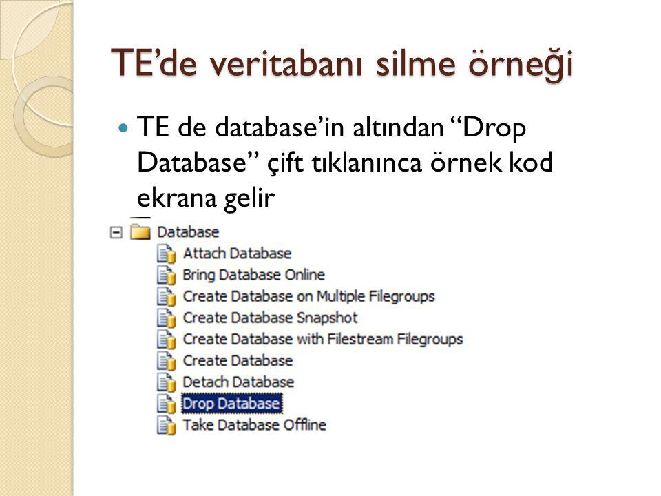"""TE'de veritabanı silme örne ğ i TE de database'in altından """"Drop Database"""" çift tıklanınca örnek kod ekrana gelir"""