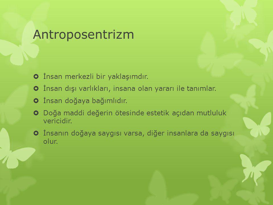 Antroposentrizm  İnsan merkezli bir yaklaşımdır.  İnsan dışı varlıkları, insana olan yararı ile tanımlar.  İnsan doğaya bağımlıdır.  Doğa maddi de