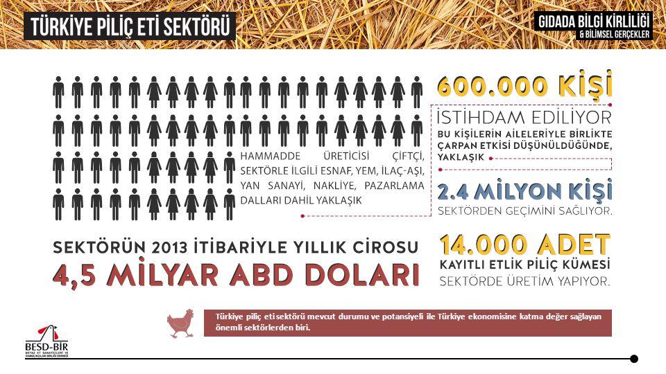 Türkiye piliç eti sektörü mevcut durumu ve potansiyeli ile Türkiye ekonomisine katma değer sağlayan önemli sektörlerden biri.