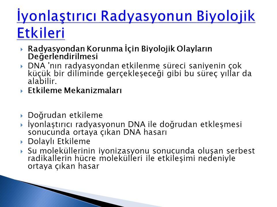 Radyasyondan Korunma İçin Biyolojik Olayların Değerlendirilmesi  DNA 'nın radyasyondan etkilenme süreci saniyenin çok küçük bir diliminde gerçekleş
