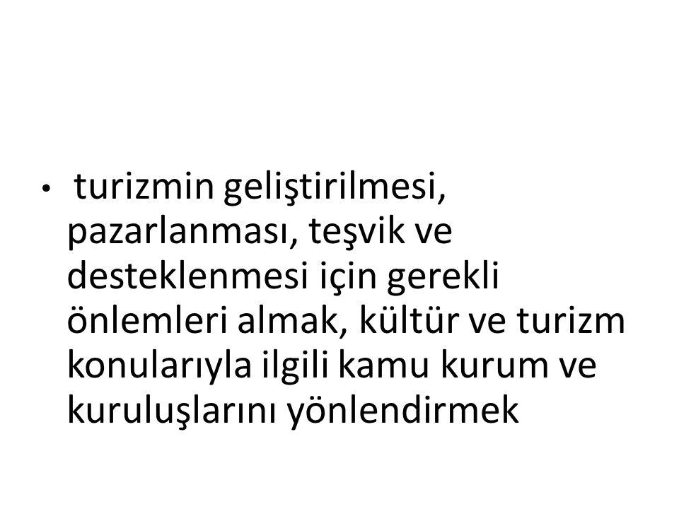 p) 2876 sayılı Atatürk Kültür, Dil ve Tarih Yüksek Kurumu Kanununun 104 üncü maddesinde belirtilen esaslar çerçevesinde Bakanlığa tahsis edilmiş ve edilecek tesis ve alanların yönetim, işletme, kullanma, devir ve kiraya verilmesi işlemlerini yapmak