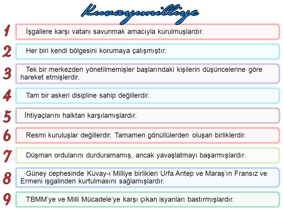 Paris Barış konferansına dayanarak yunanlılar İzmir'e asker çıkarmıştı. Hemen katliamlara başlayan yunanlılar karşısında İstanbul Hükümeti hiç bir şey