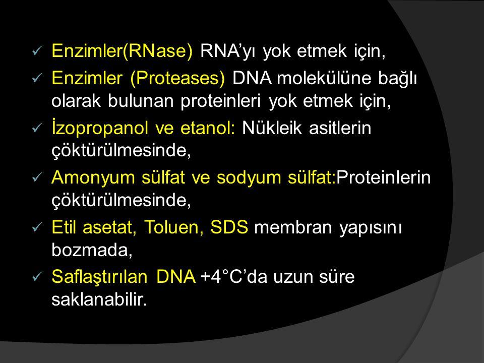 Enzimler(RNase) RNA'yı yok etmek için, Enzimler (Proteases) DNA molekülüne bağlı olarak bulunan proteinleri yok etmek için, İzopropanol ve etanol: Nük