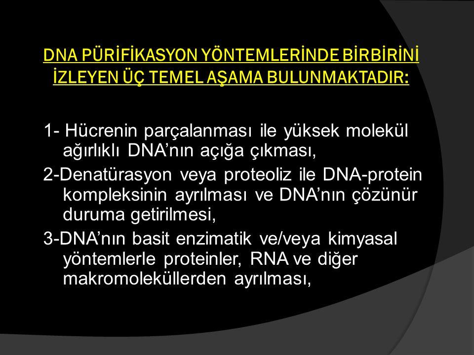 BAŞARILI BİR DNA SAFLAŞTIRILMASI İÇİN