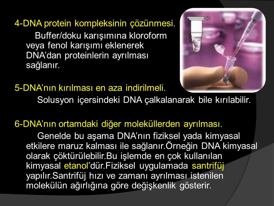 5-DNA'nın kırılması en aza indirilmeli. Solusyon içersindeki DNA çalkalanarak bile kırılabilir. 6-DNA'nın ortamdaki diğer moleküllerden ayrılması. Gen