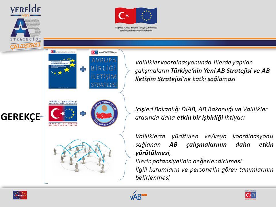 Valilikler koordinasyonunda illerde yapılan çalışmaların Türkiye'nin Yeni AB Stratejisi ve AB İletişim Stratejisi'ne katkı sağlaması İçişleri Bakanlığ
