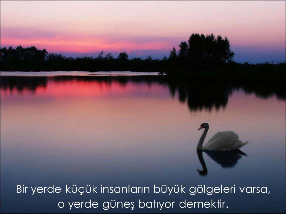 Bilgi insanı kuşkulardan, iyilik acılardan, kararlılık korkulardan kurtarır.