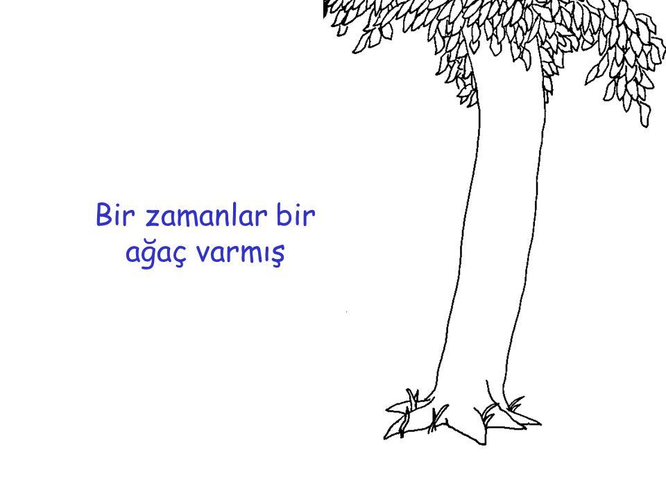 Ve bu ağaç küçük bir çocuğa aşık olmuş
