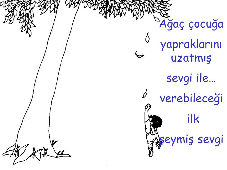 Ağaç çocuğa yapraklarını uzatmış sevgi ile… verebileceği ilk şeymiş sevgi