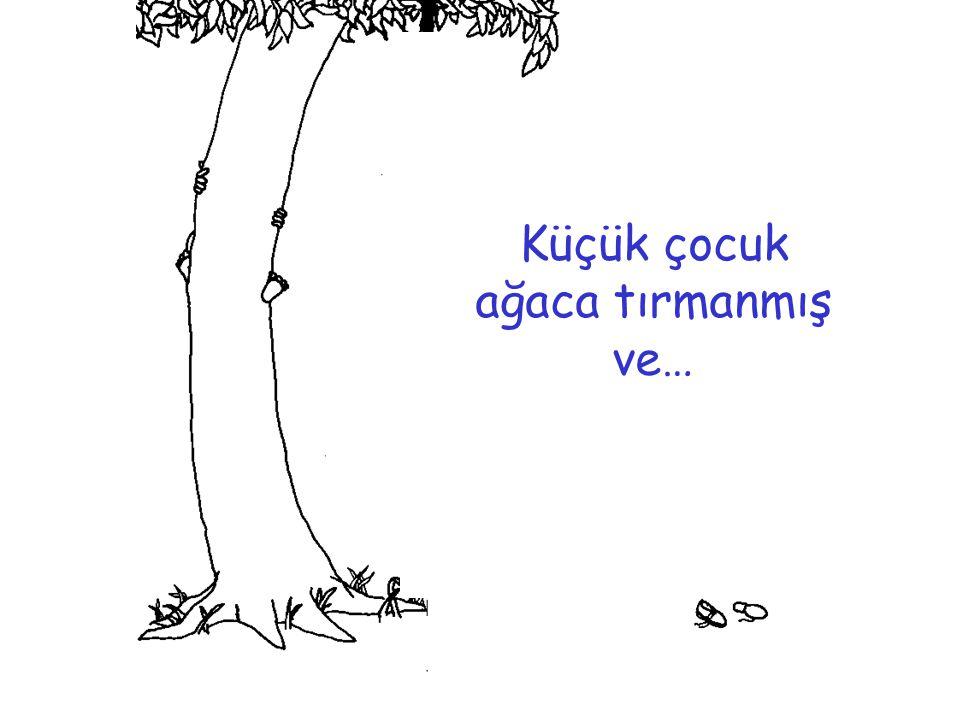 Sonra bir gün, küçük çocuk geri gelmiş ağaç: haydi gel dallarımda sallan, elmalarımdan ye, saklambaç oynayalım, gölgemde bile uyursun demiş.