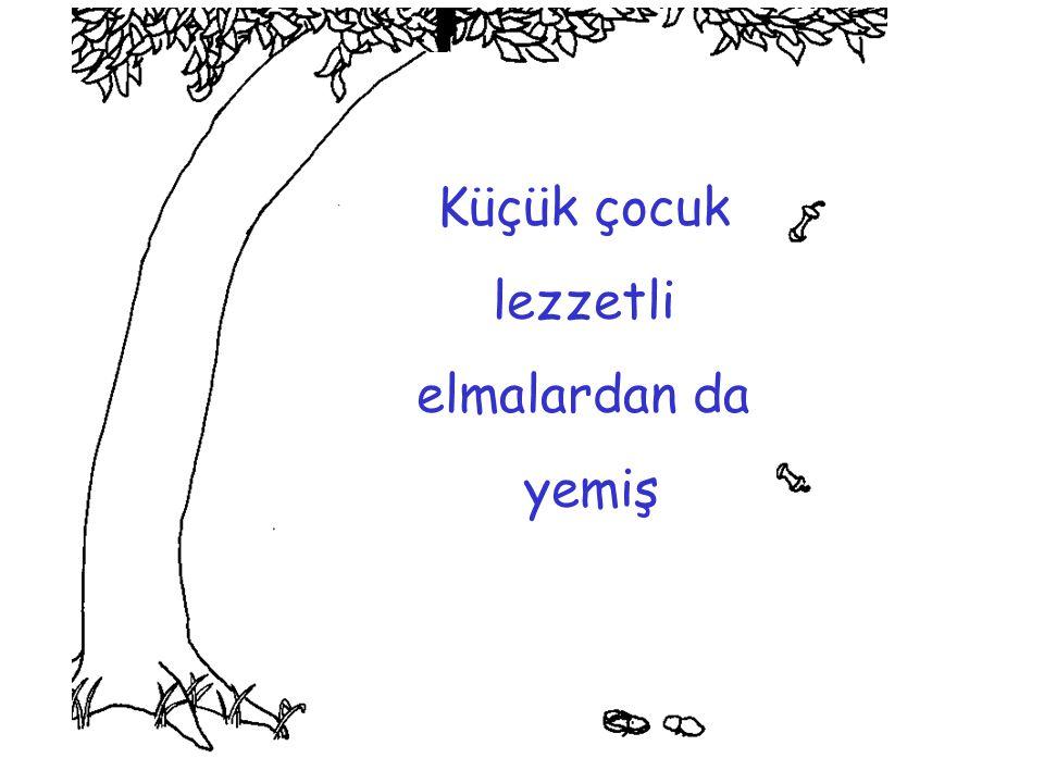 Ağaç, tekrar bana döndü diye mutluymuş; çünkü o artık hiç bir yere gidemezmiş… Ve SON