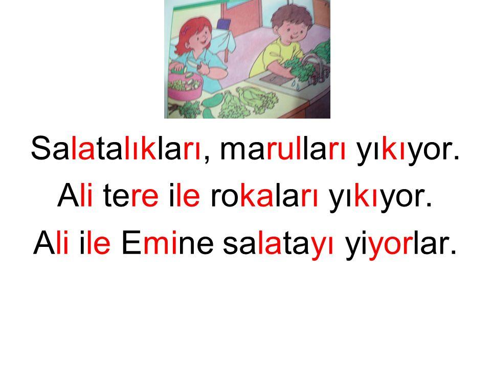 Salatalıkları, marulları yıkıyor. Ali tere ile rokaları yıkıyor. Ali ile Emine salatayı yiyorlar.