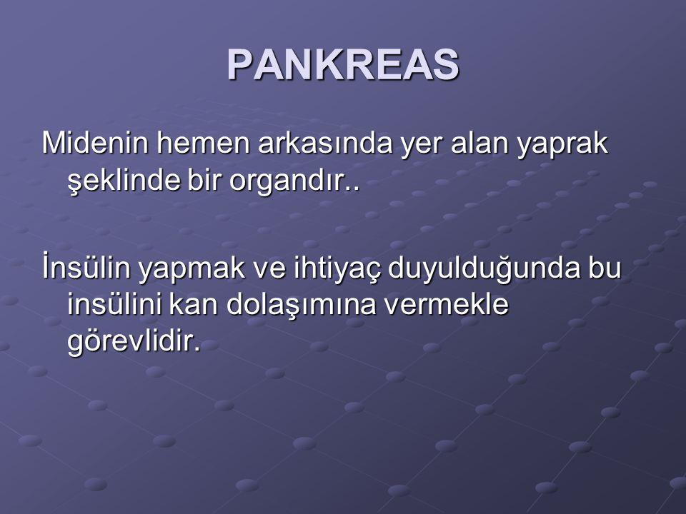 PANKREAS Midenin hemen arkasında yer alan yaprak şeklinde bir organdır.. İnsülin yapmak ve ihtiyaç duyulduğunda bu insülini kan dolaşımına vermekle gö