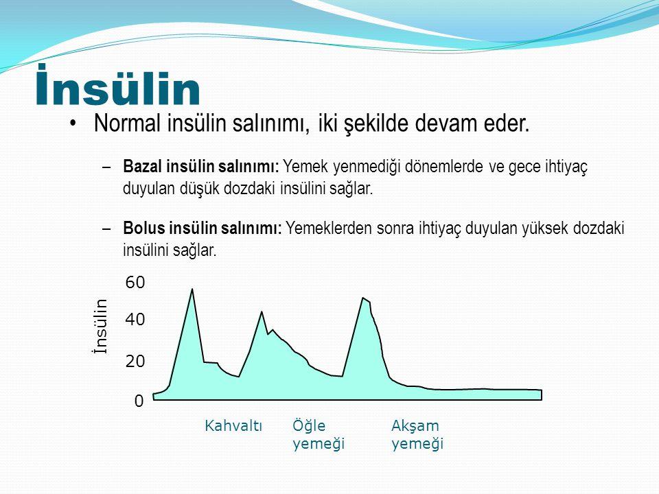 İnsülin Normal insülin salınımı, iki şekilde devam eder. – Bazal insülin salınımı: Yemek yenmediği dönemlerde ve gece ihtiyaç duyulan düşük dozdaki in