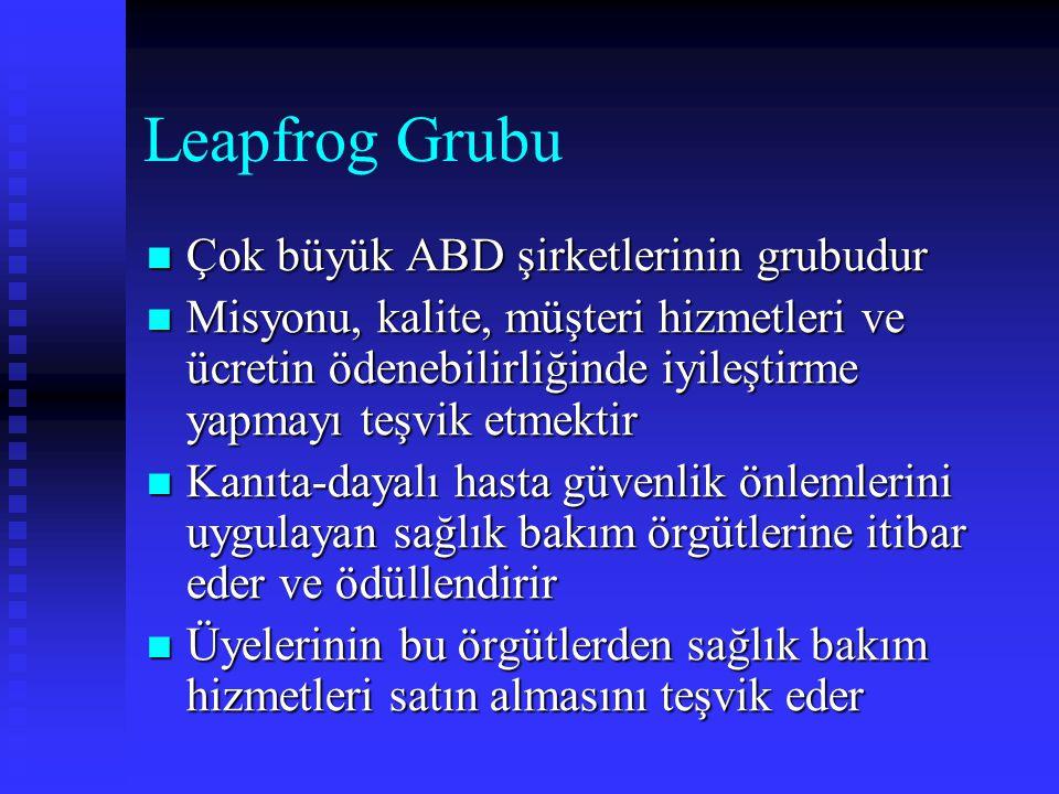Leapfrog Grubu Çok büyük ABD şirketlerinin grubudur Çok büyük ABD şirketlerinin grubudur Misyonu, kalite, müşteri hizmetleri ve ücretin ödenebilirliği