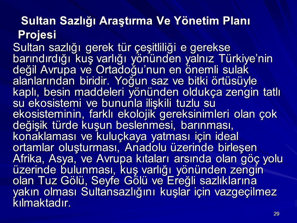 29 Sultan Sazlığı Araştırma Ve Yönetim Planı Projesi Sultan Sazlığı Araştırma Ve Yönetim Planı Projesi Sultan sazlığı gerek tür çeşitliliği e gerekse